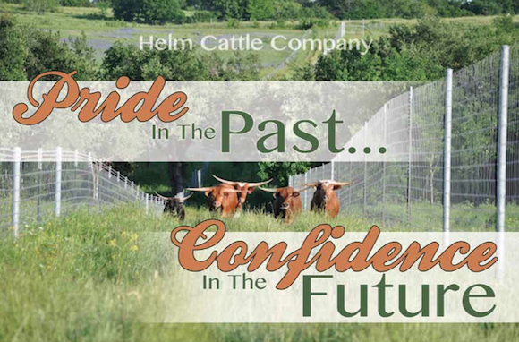 Helm Cattle Company pride in Registered Texas Longhorns